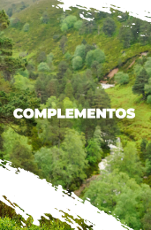 complementos trail running